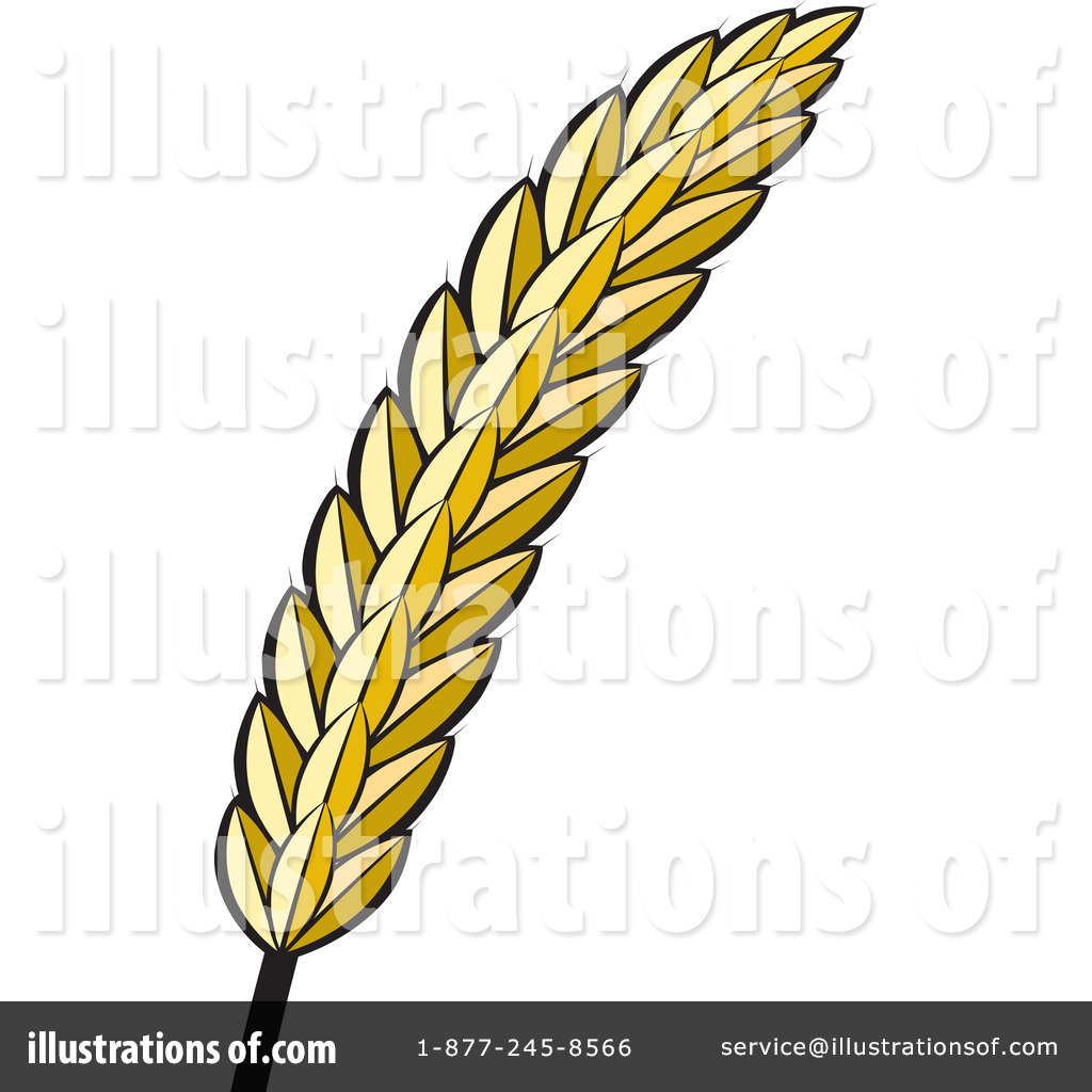 Free download best on. Grain clipart barley