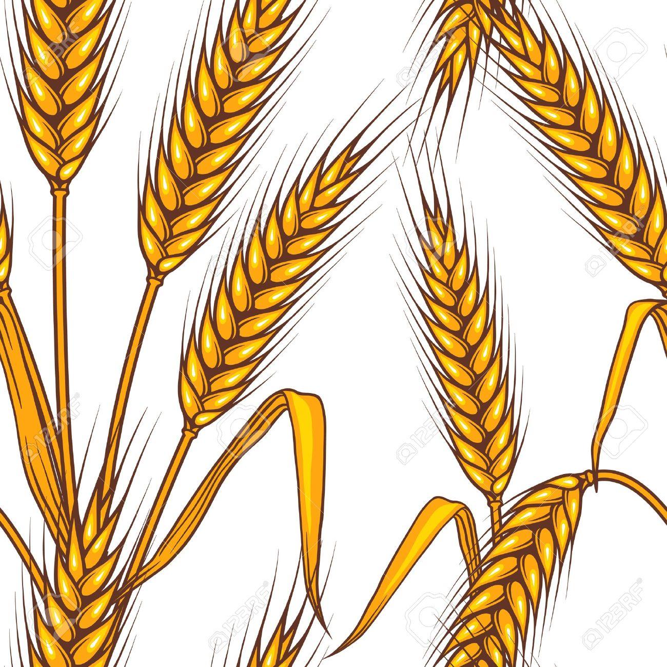 Abstract panda free images. Grain clipart barley