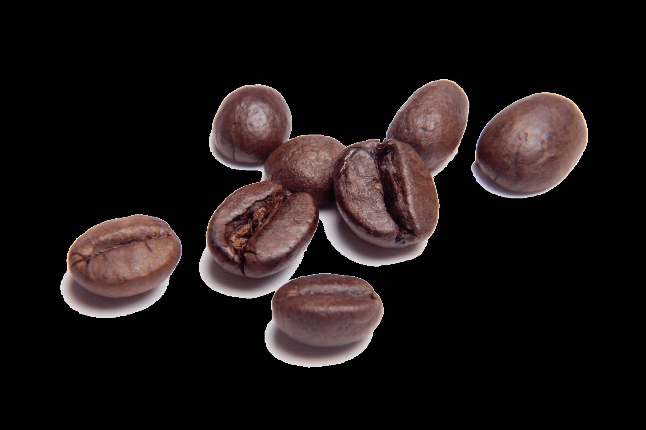 Grains clipart bean. Png coffee beans transparent