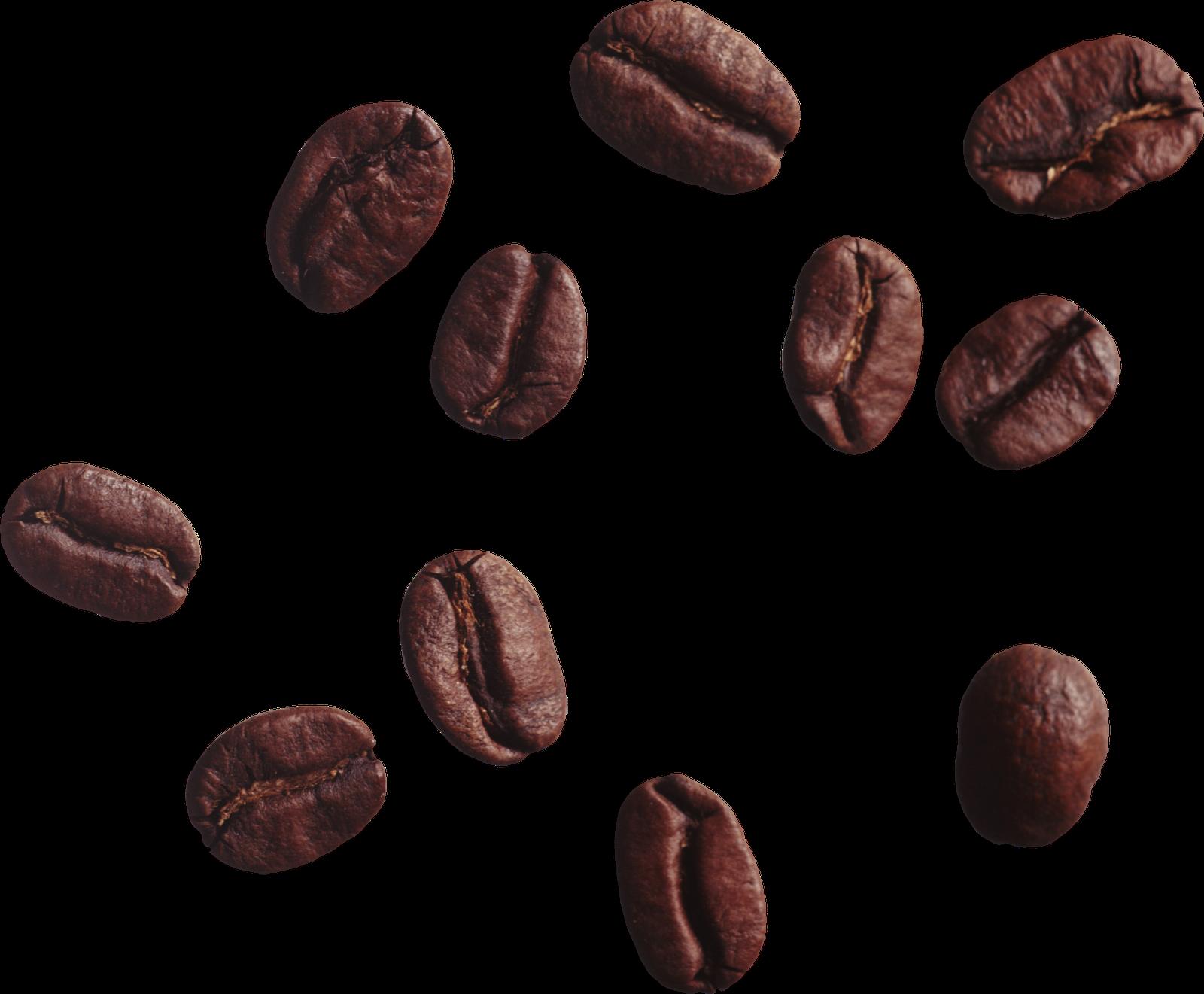Coffee beans png images. Grains clipart bean