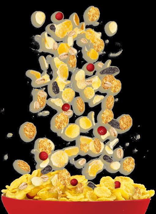 Saffola multigrain flakes healthy. Grains clipart oats