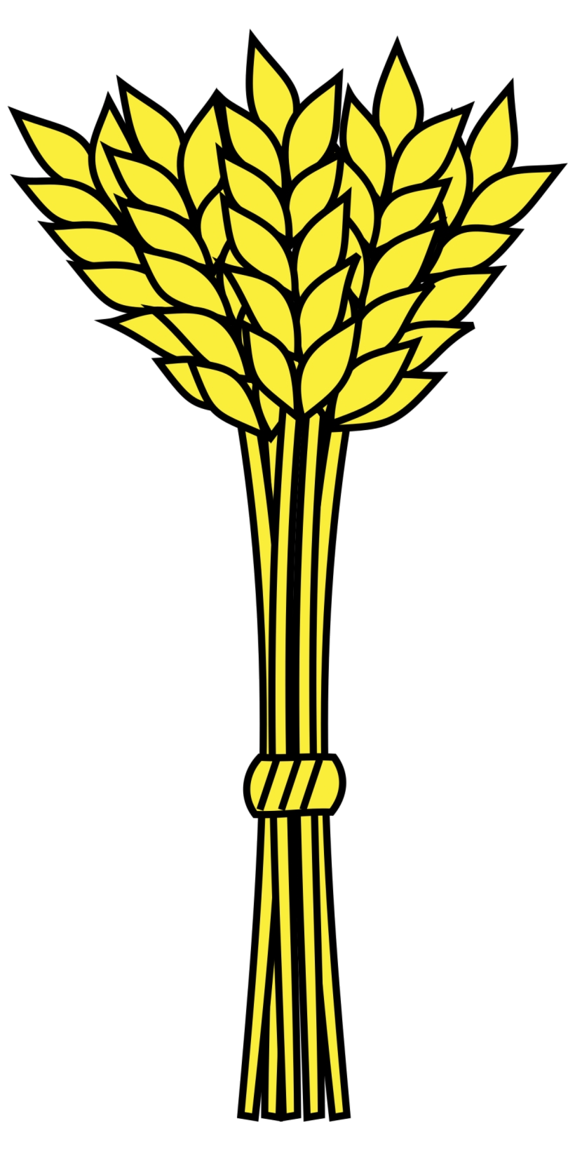 Grain stalk of transparent. Wheat clipart bushel wheat