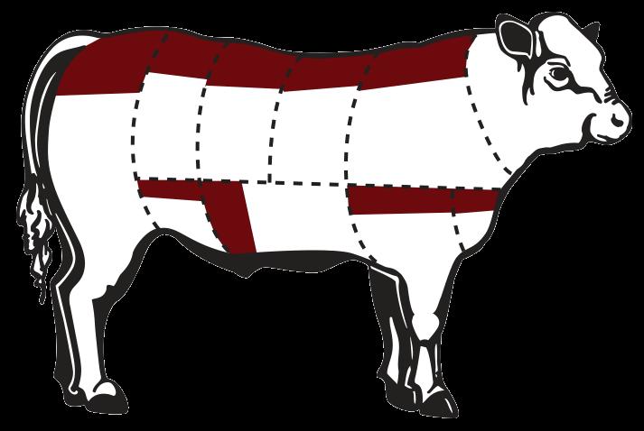 liver clipart cow