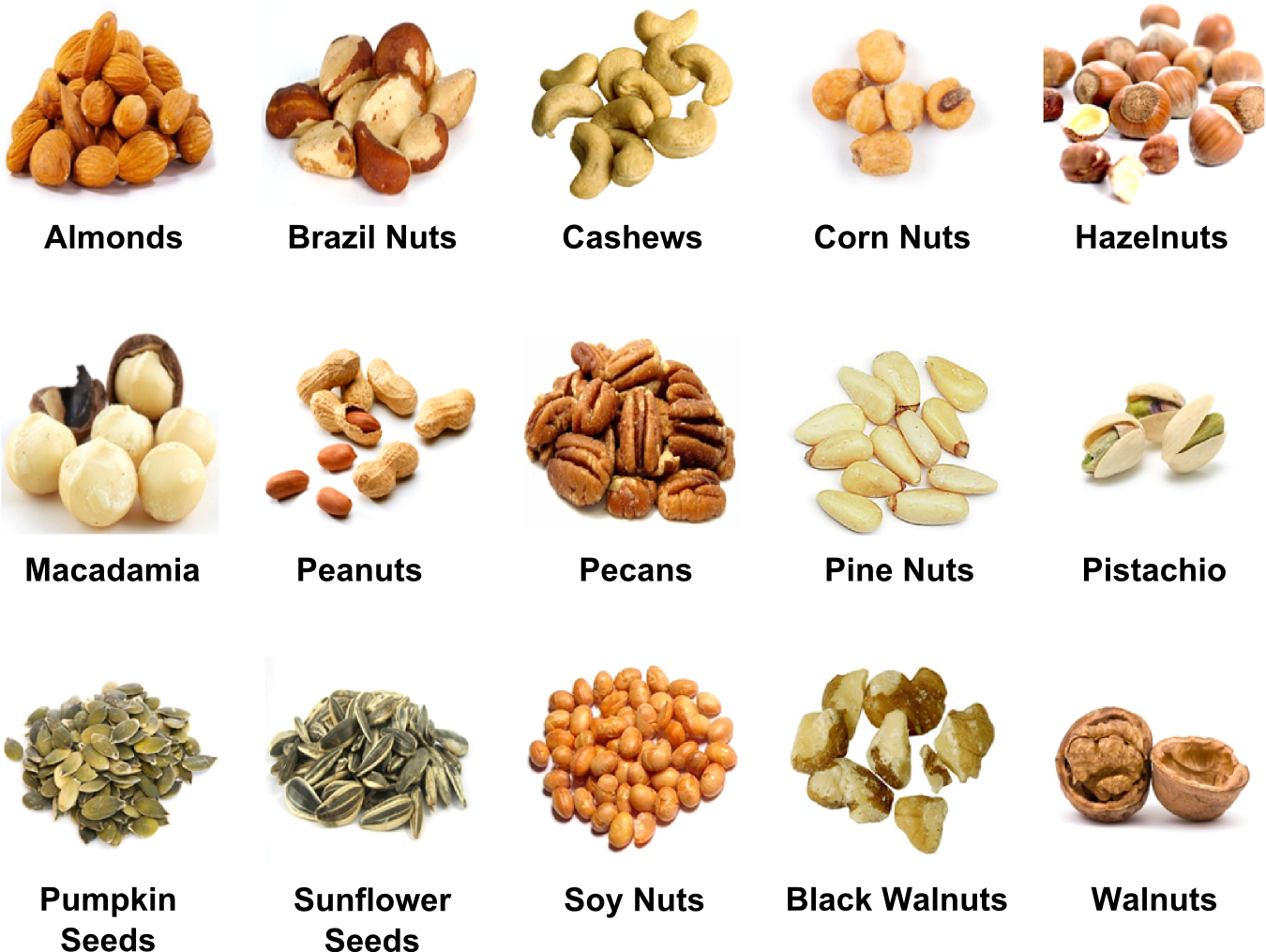 Pictures and names of. Grain clipart dry fruit