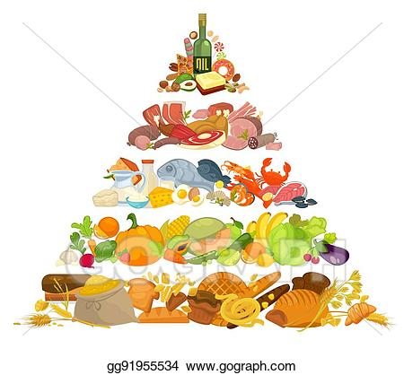 Meat clipart food pyramid. Vector stock infographic of