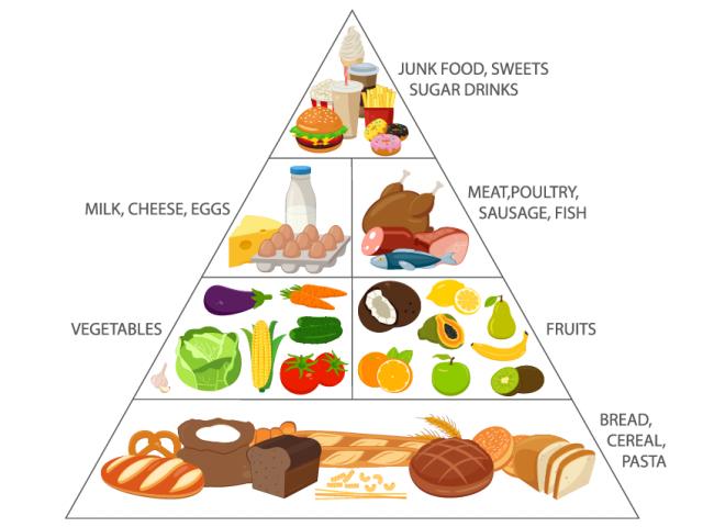 Free download clip art. Grains clipart food pyramid