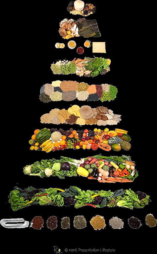 Grains clipart food pyramid. Prescription lifestyle