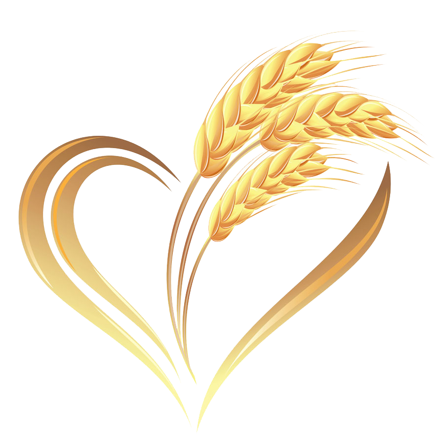 Heart cereal transprent png. Grains clipart golden wheat