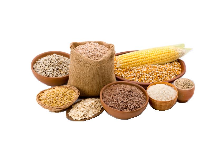 Grains grain food group