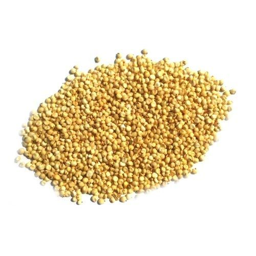 Download free png grains. Grain clipart jowar