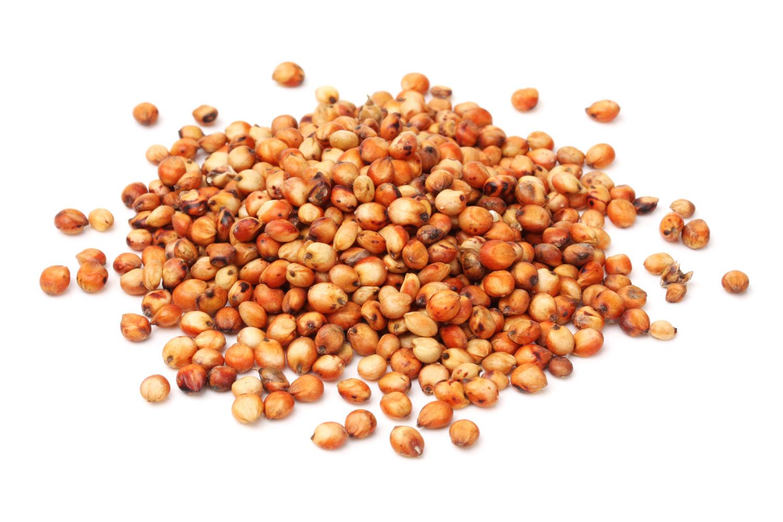 Grain clipart jowar. Free rice download clip