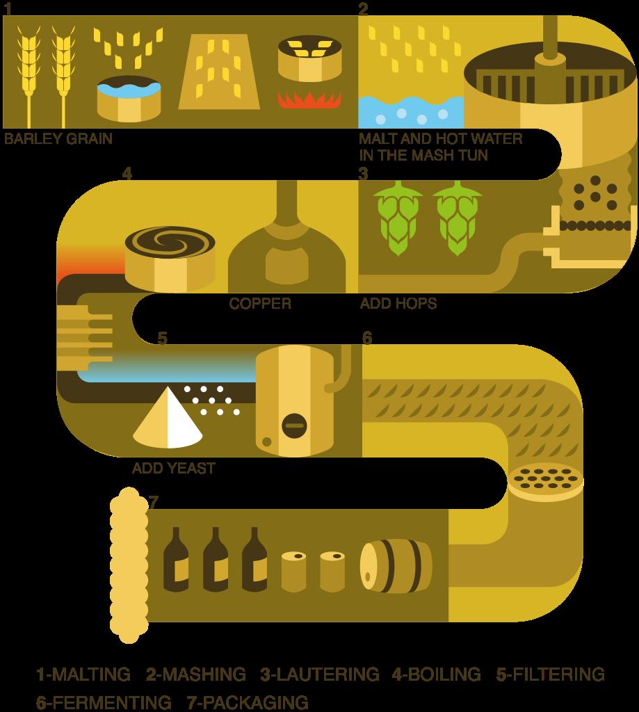 File brewing process graph. Grain clipart malt