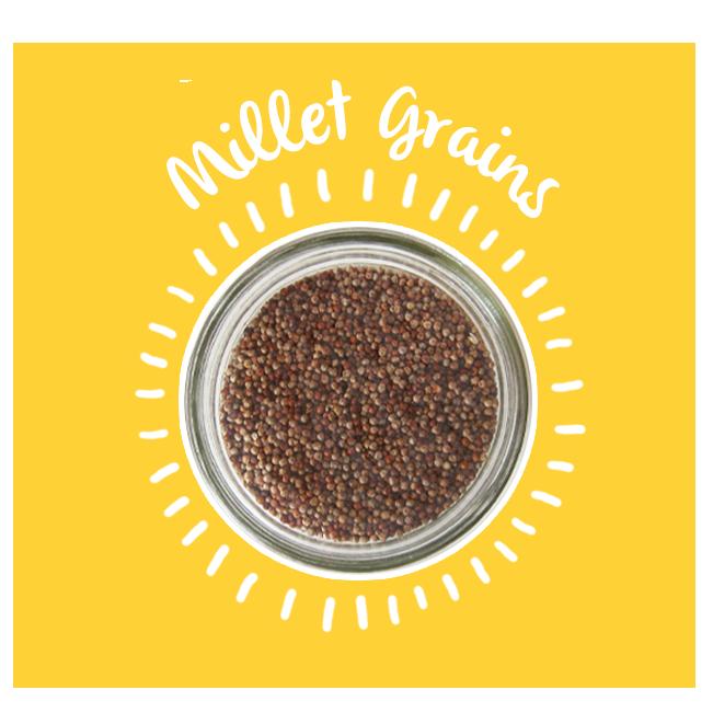 Koshafoods shop now. Grain clipart millet