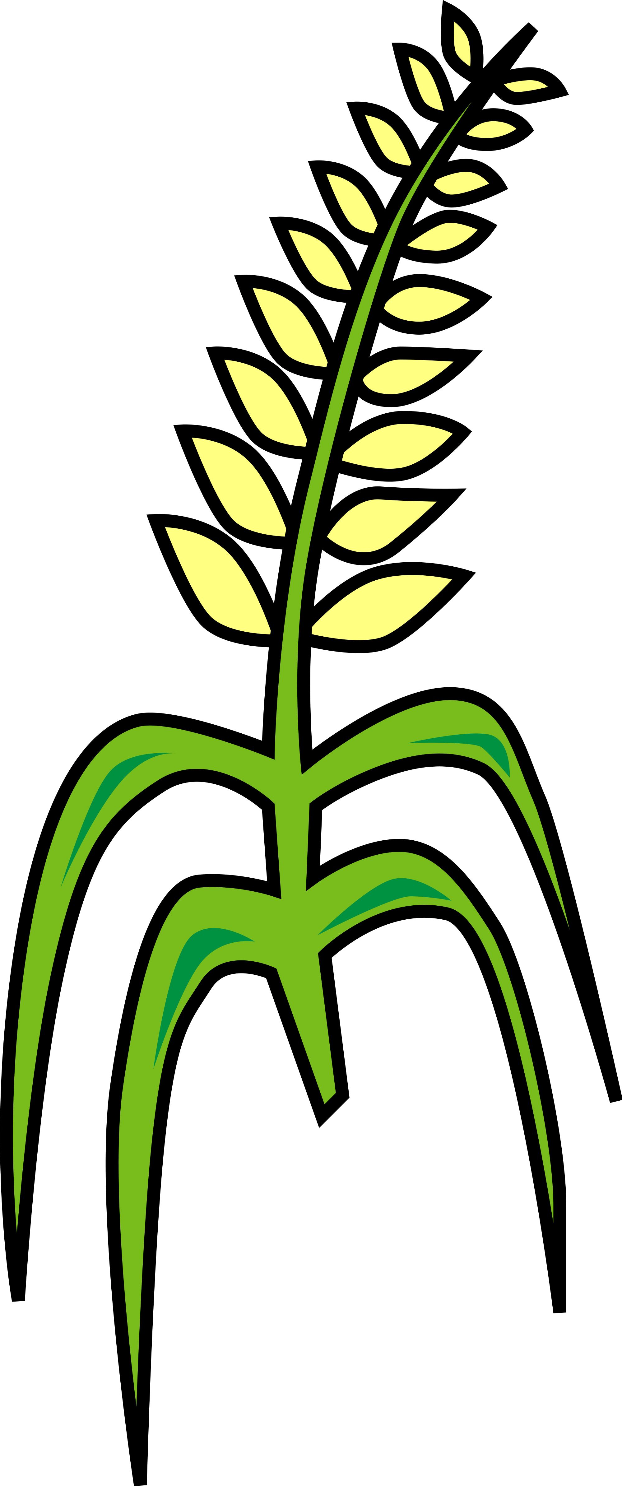 Grain clipart millet. File svg wikimedia commons