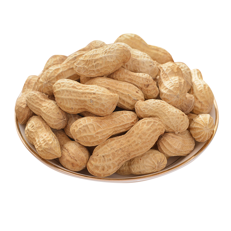 Png images free download. Peanut clipart ground nut