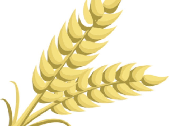 Grain clipart outline. Wood cliparts free download