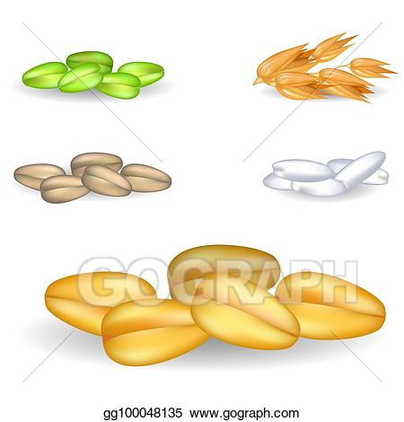 Vector pile with small. Grain clipart piece wheat
