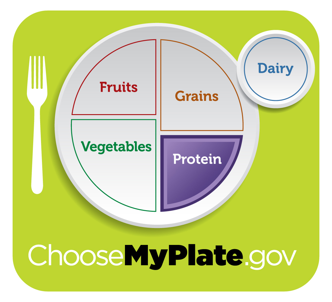 My plate free download. Meal clipart myplate