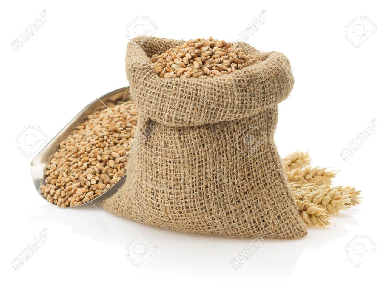 Flour sack pencil and. Grains clipart grain bag