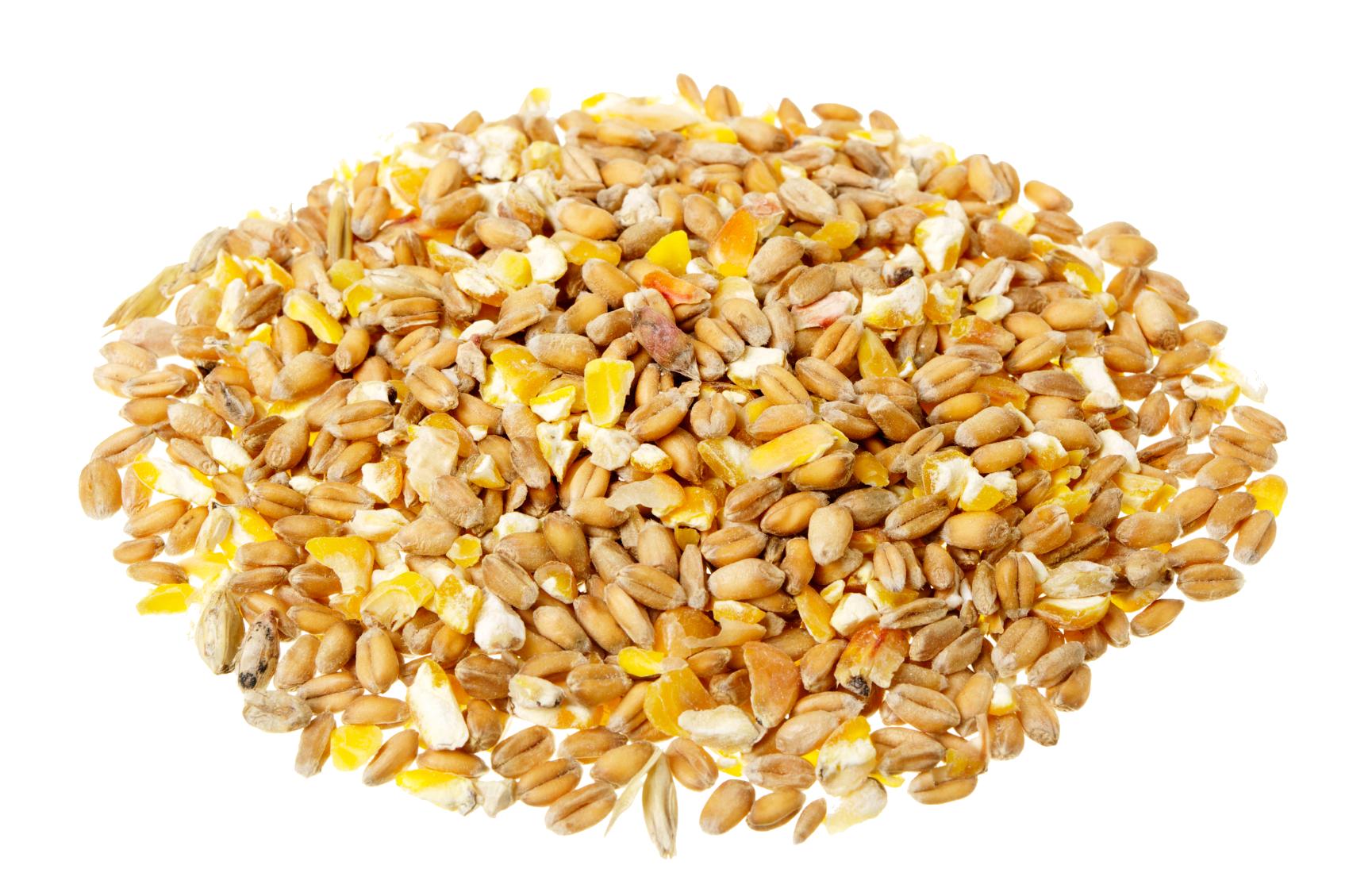 Grain background png mart. Grains clipart transparent