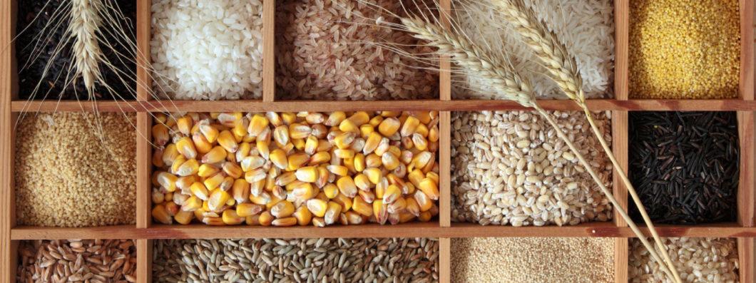 Guide to whole grains. Grain clipart unprocessed