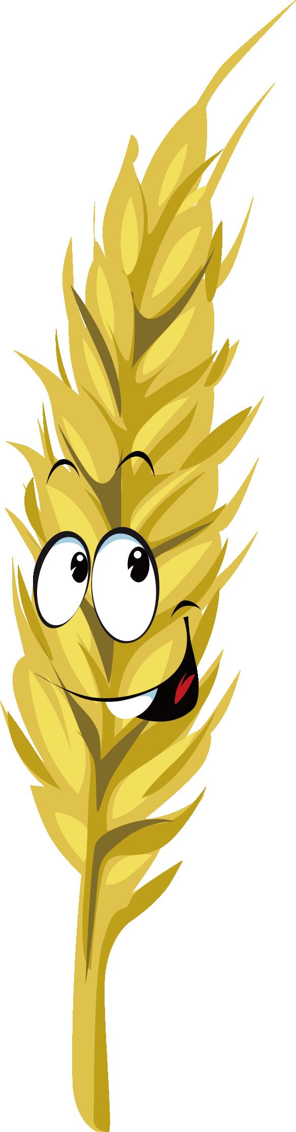 Grain clipart wheat head. Cartoon drawing royalty free