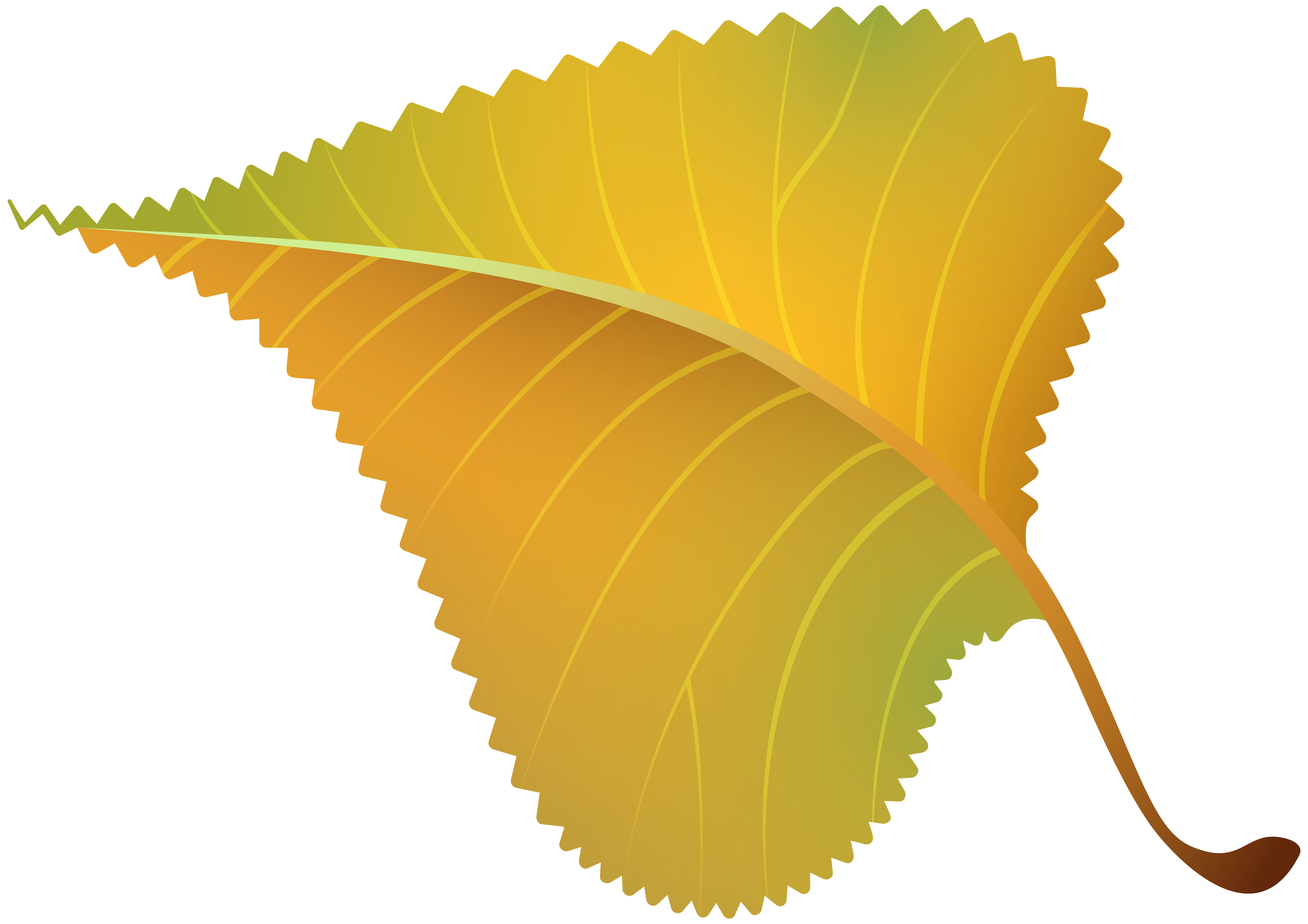 Fall yellow leaf png. Grains clipart wheat leaves
