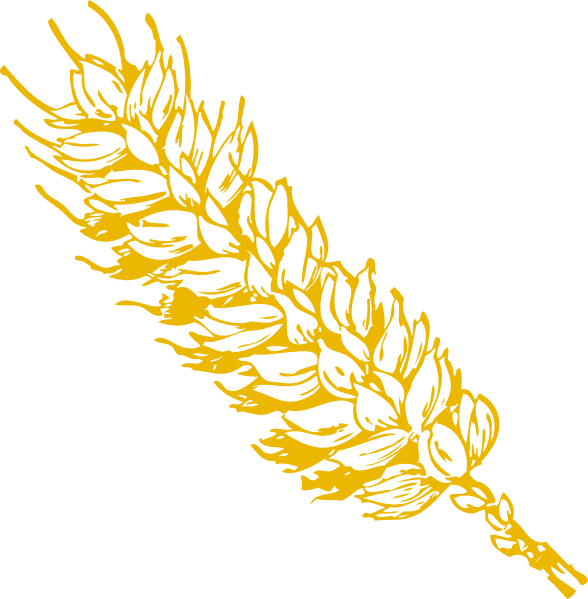 Clip art at clker. Wheat clipart gold wheat