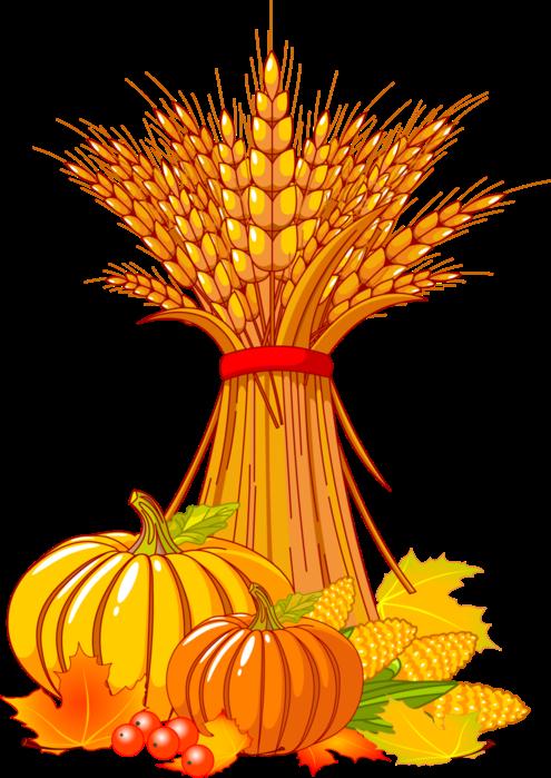 Forgetmenot vegetables publicat de. Wheat clipart wheat wreath