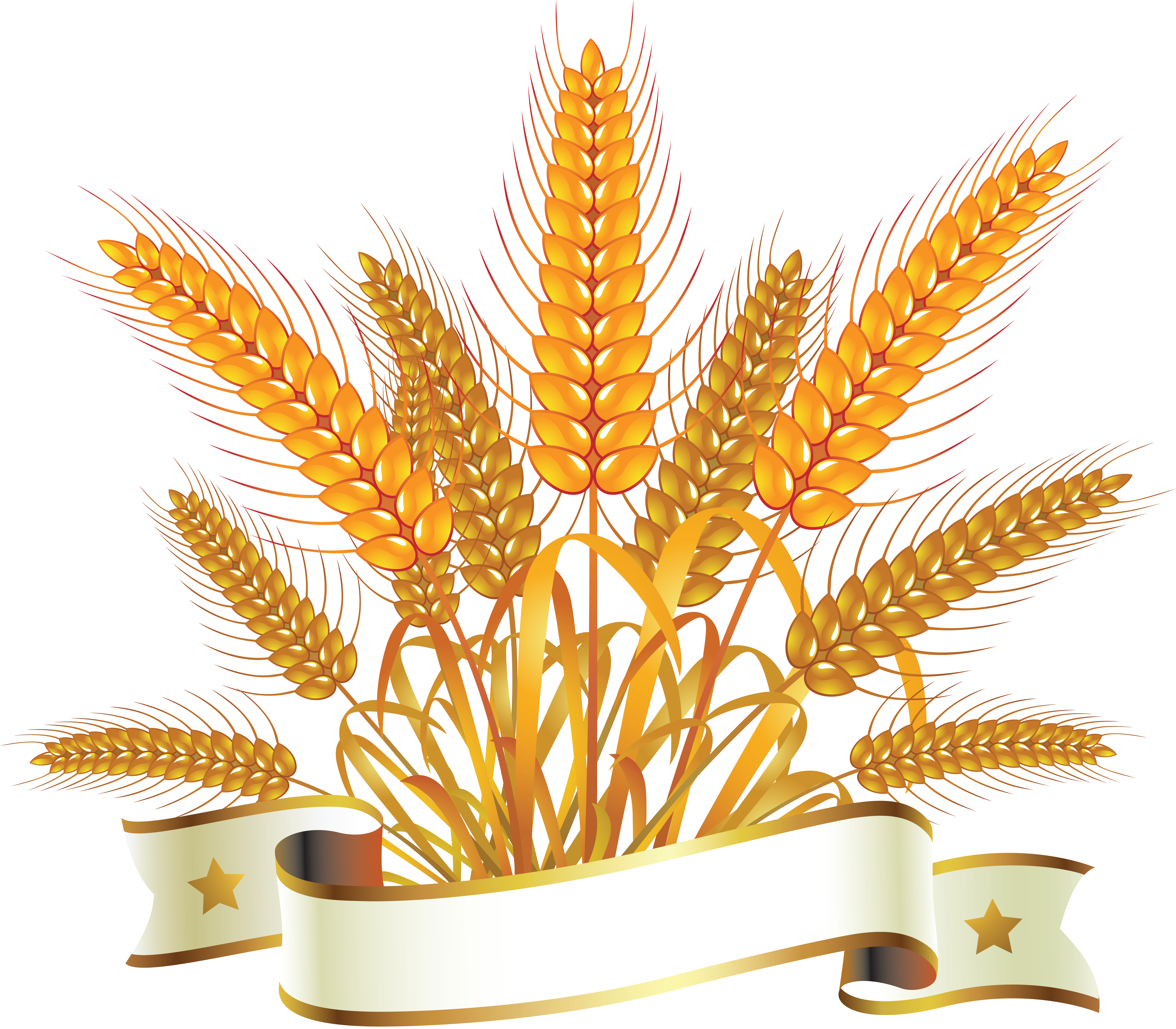 Grains clipart common. Wheat png images free