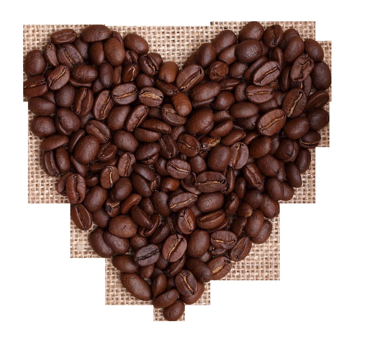 Coffee beans png image. Grains clipart bean