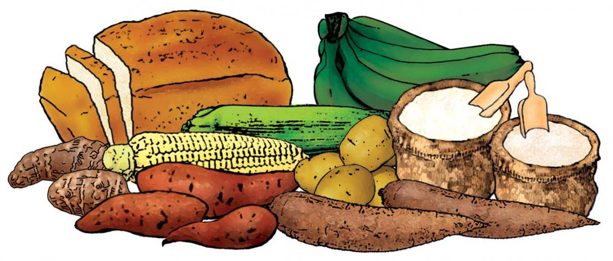Grains clipart starch. Food and starches m