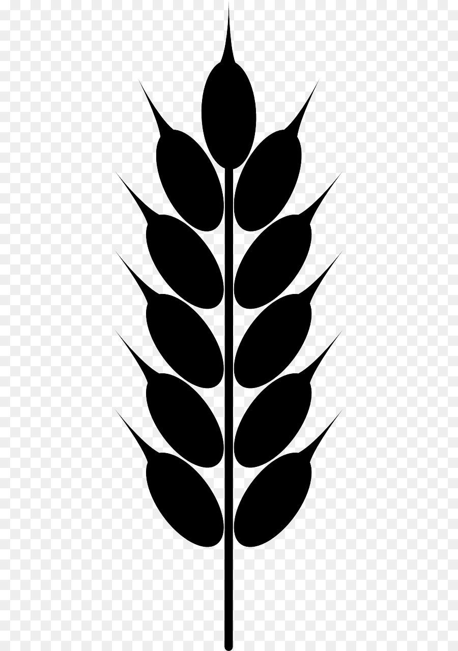 Grains clipart wheat leaves. Cartoon leaf plant transparent