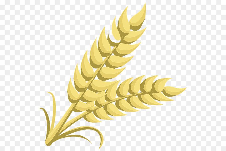 Cartoon . Grains clipart wheat leaves