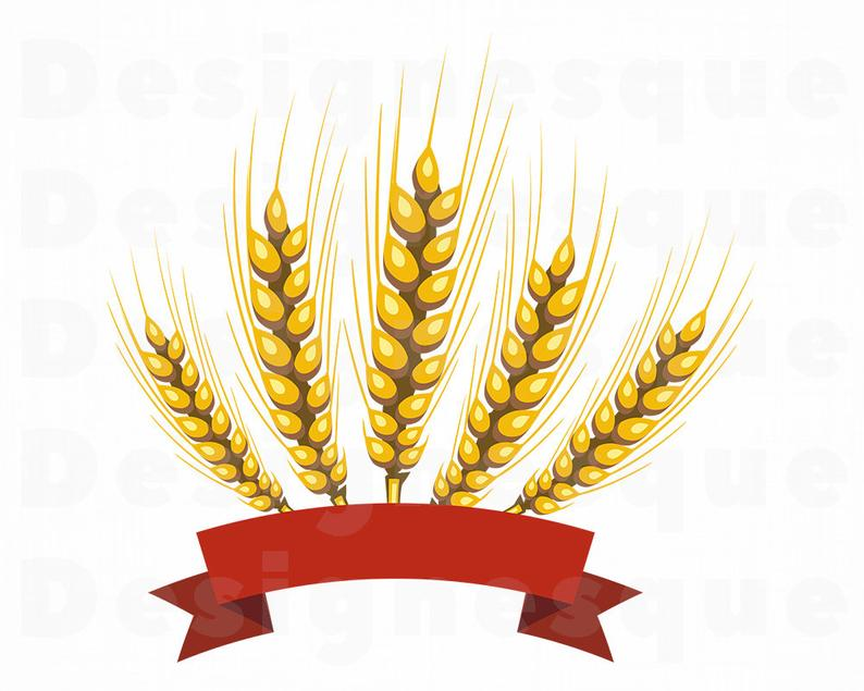 Svg grain files for. Wheat clipart logo