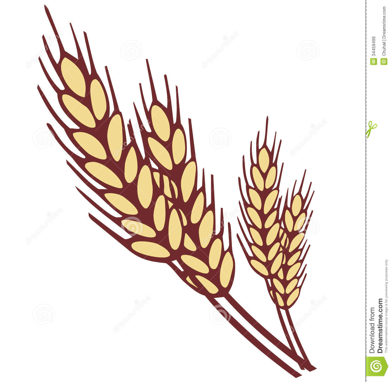 Wheat clipart wheat stock.  clipartlook