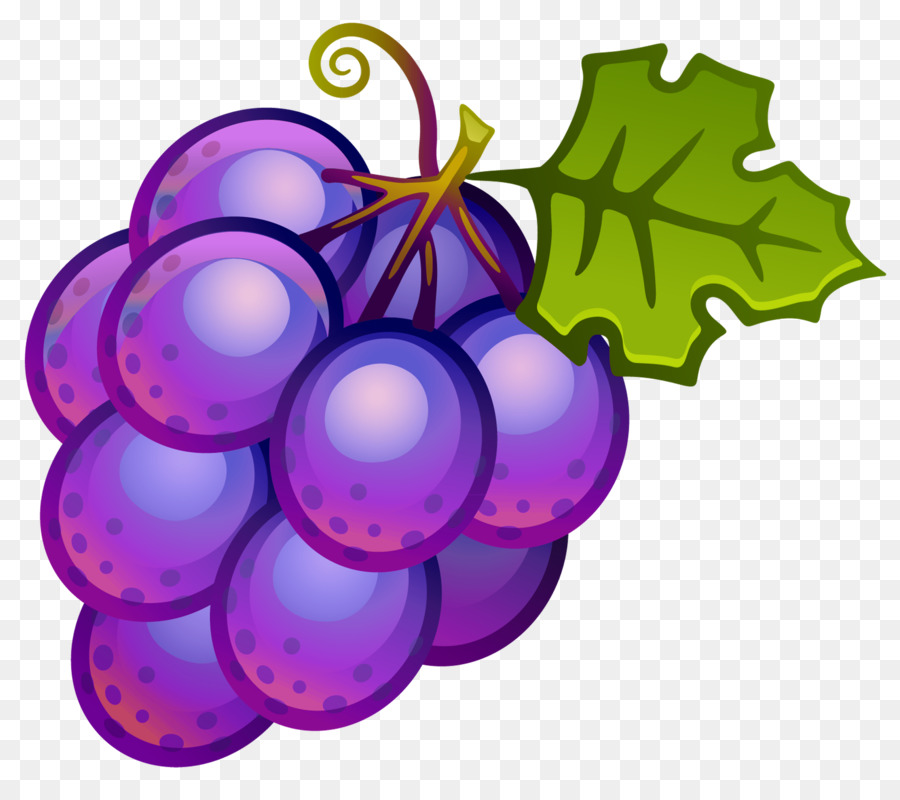 Common vine wine juice. Grape clipart