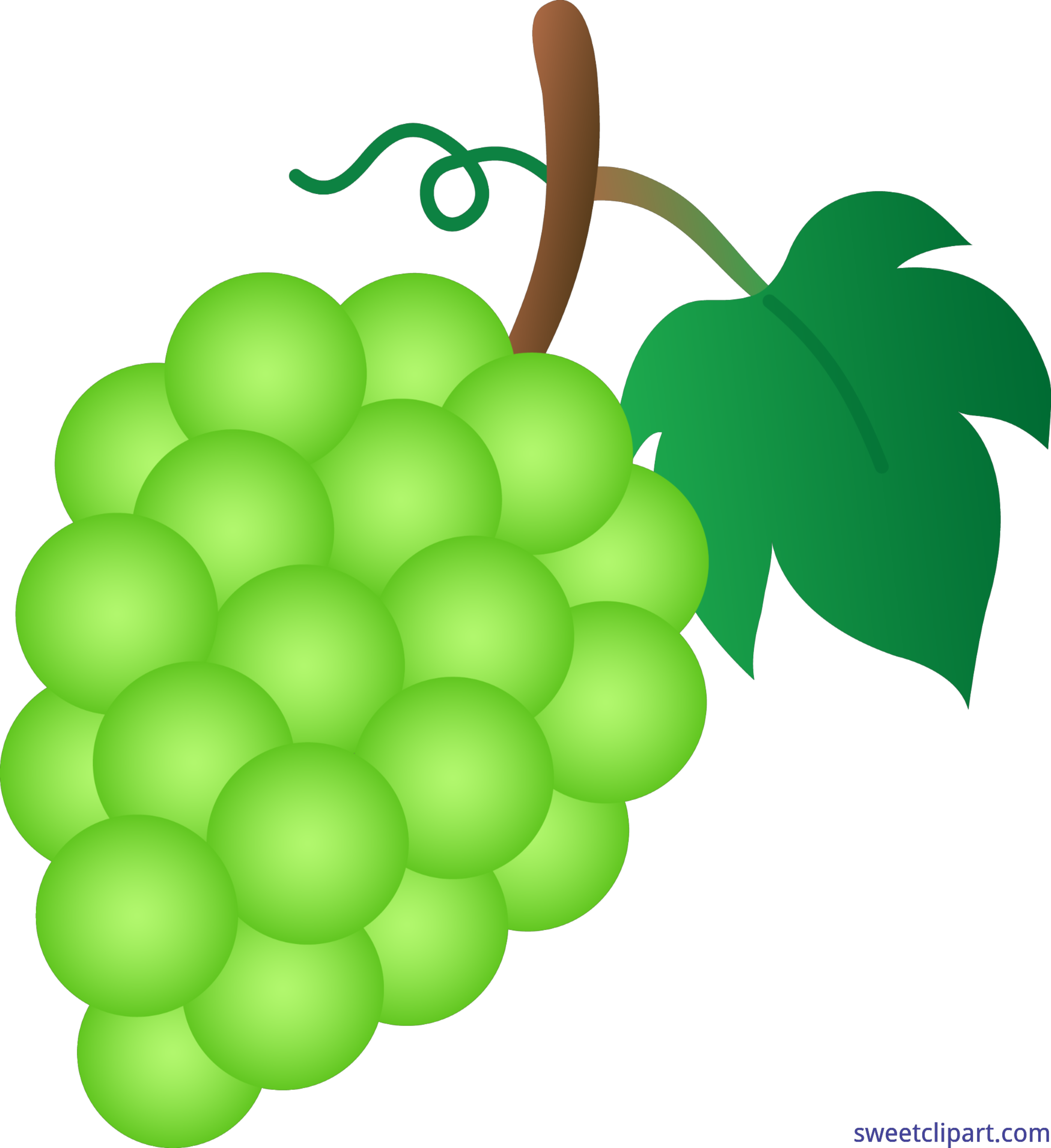 Green grapes clip art. Grape clipart
