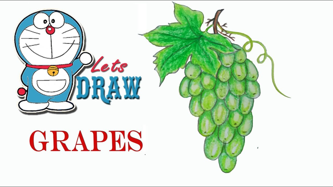 Grape clipart angoor. How to draw grapes