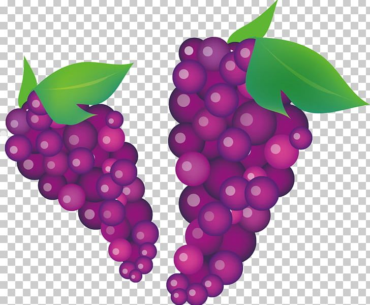 Common grape vine wine. Grapes clipart autumn fruit