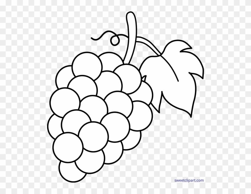 Grape clipart black and white. Grapes