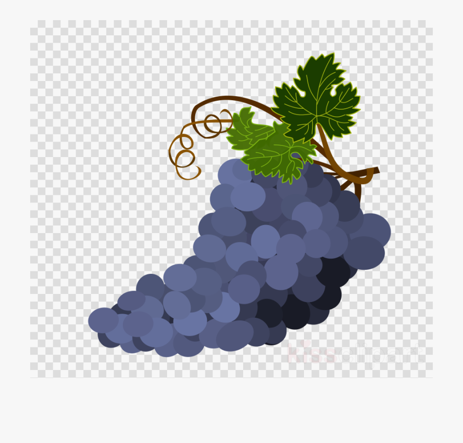 Grapes clipart bowl grape. Download of transparent background