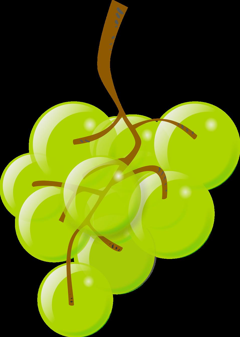 grape clipart bunch grape