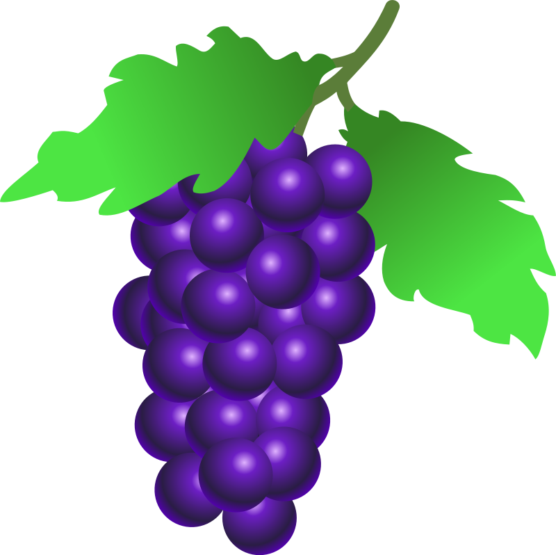 Fruits clipart purple fruit.  collection of grapes