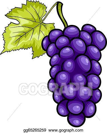 Vector blue fruit cartoon. Grapes clipart illustration