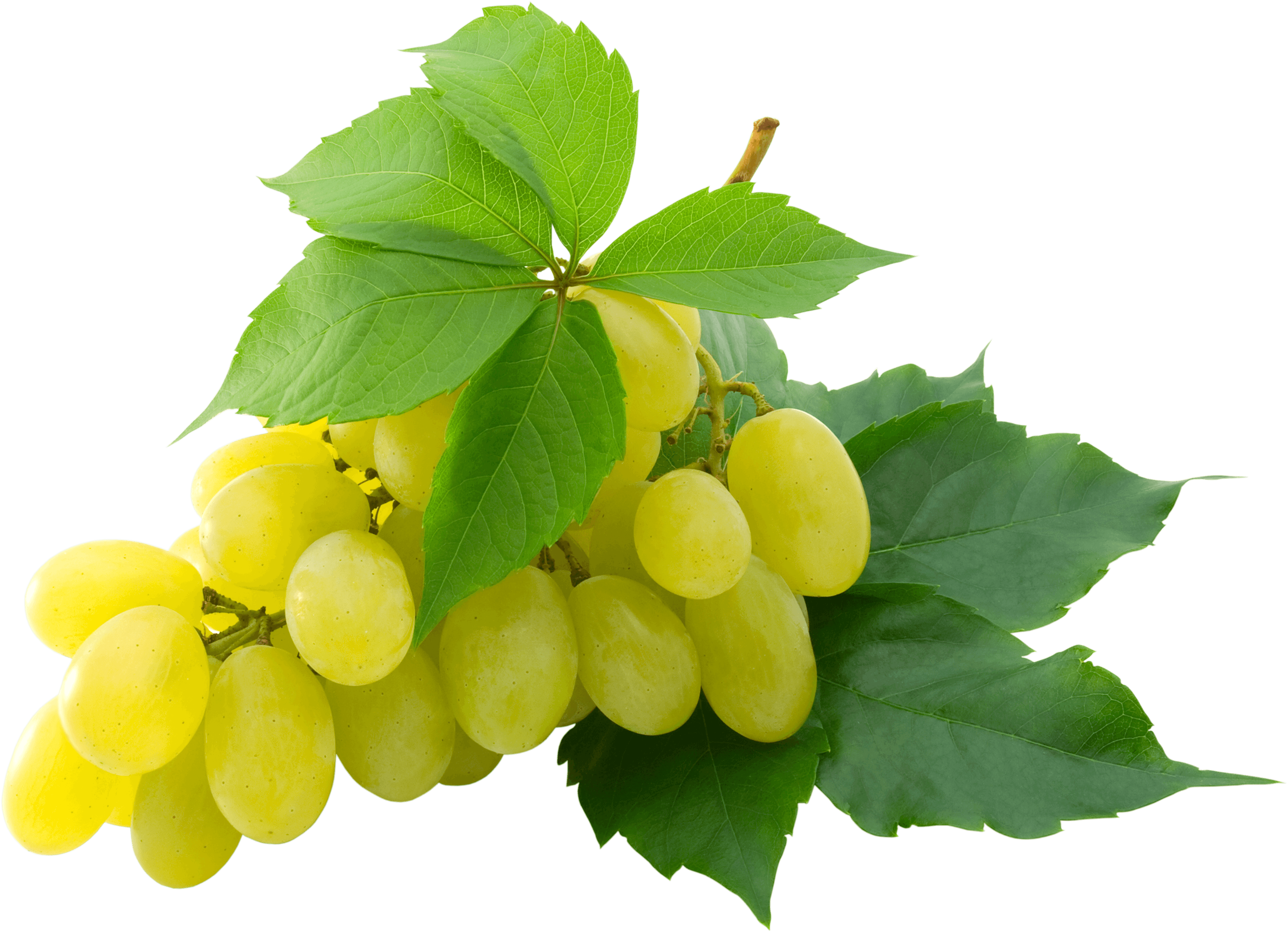 Name png ready made. Grape clipart clear background