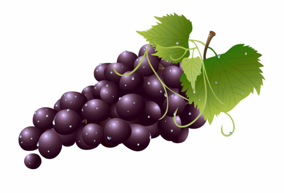 Grape clipart clear background. Transparent