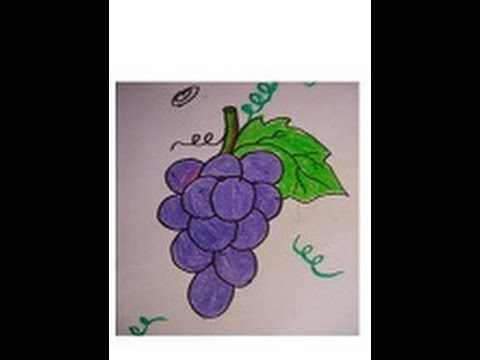 Drawing for kids grapes. Grape clipart easy draw