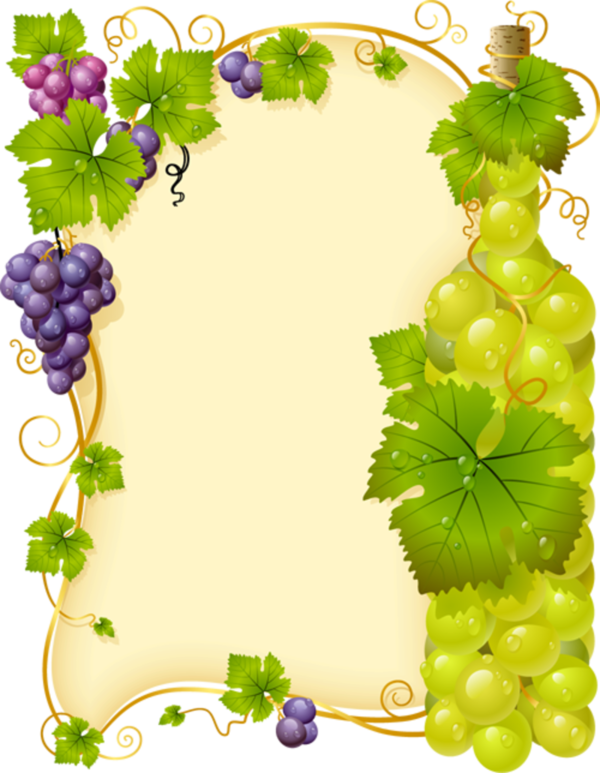 Vine fra e ornamenty. Grape clipart first communion