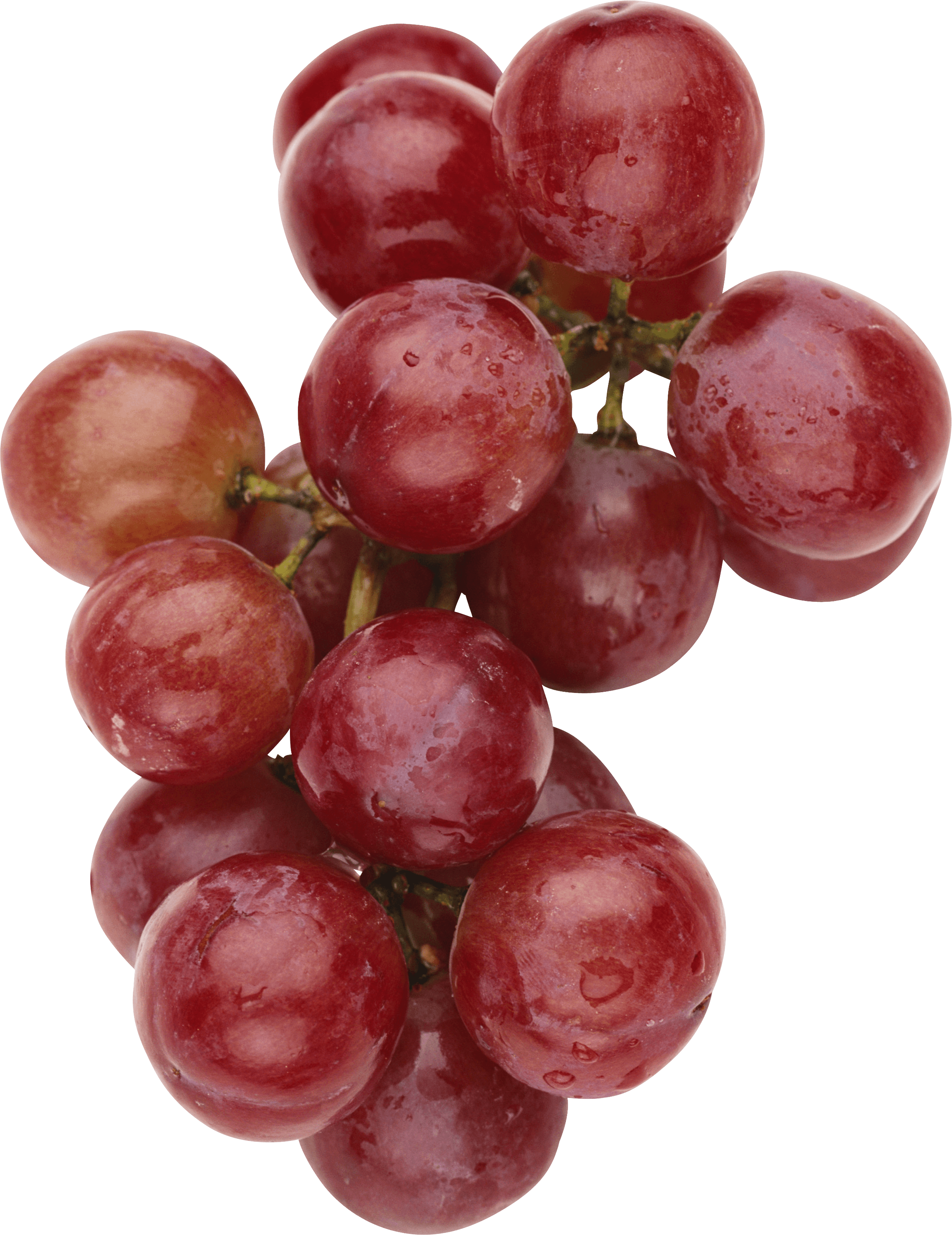 Red with leaves transparent. Grapes clipart wine grape